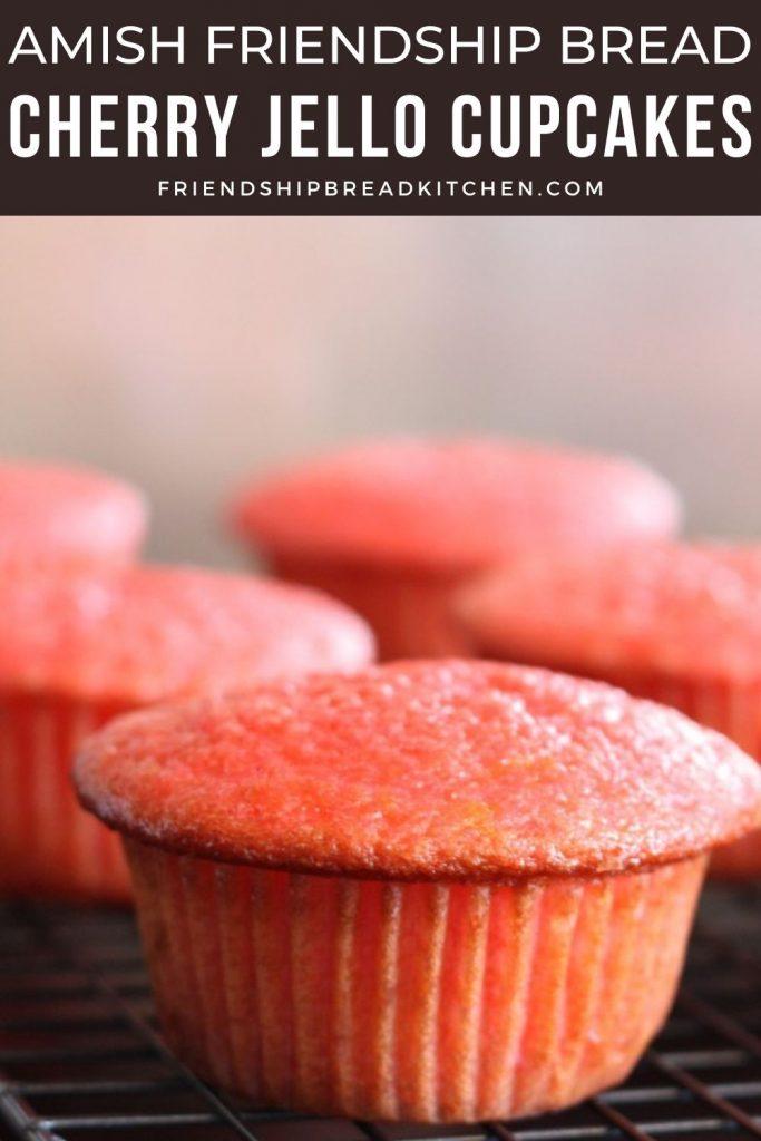 cherry jello amish friendship bread cupcakes