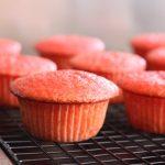 Cherry Jell-O Amish Friendship Bread Cupcakes