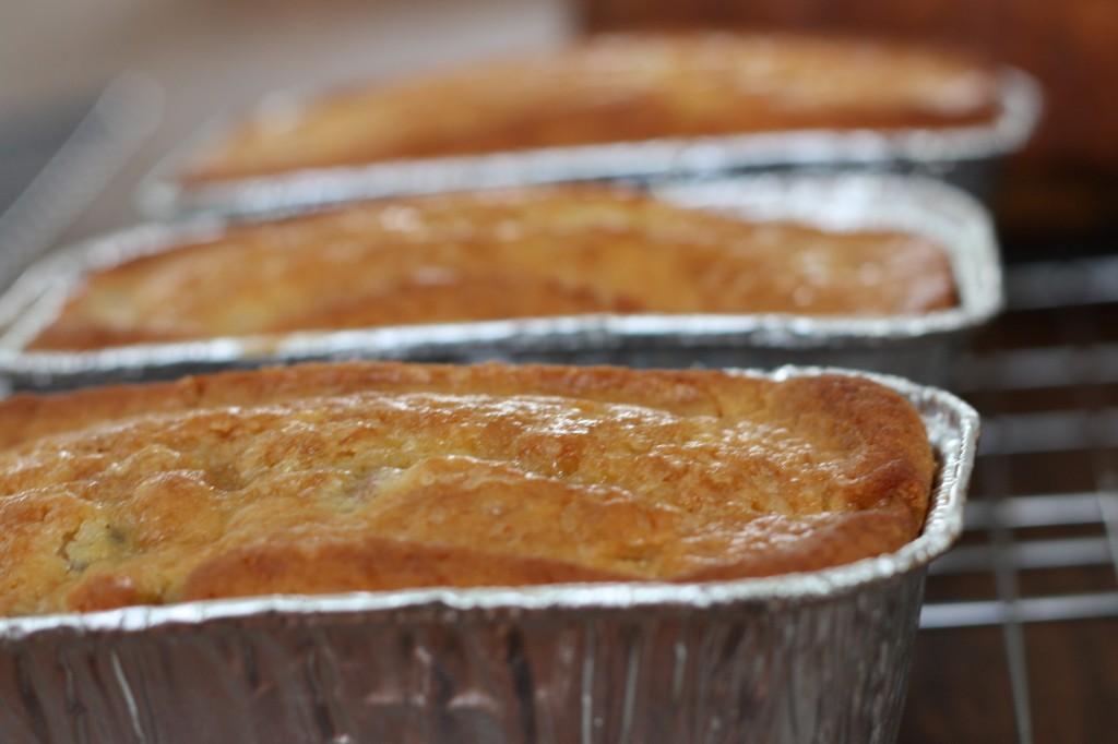 Rhubarb Amish Friendship Bread ♥ friendshipbreadkitchen.com