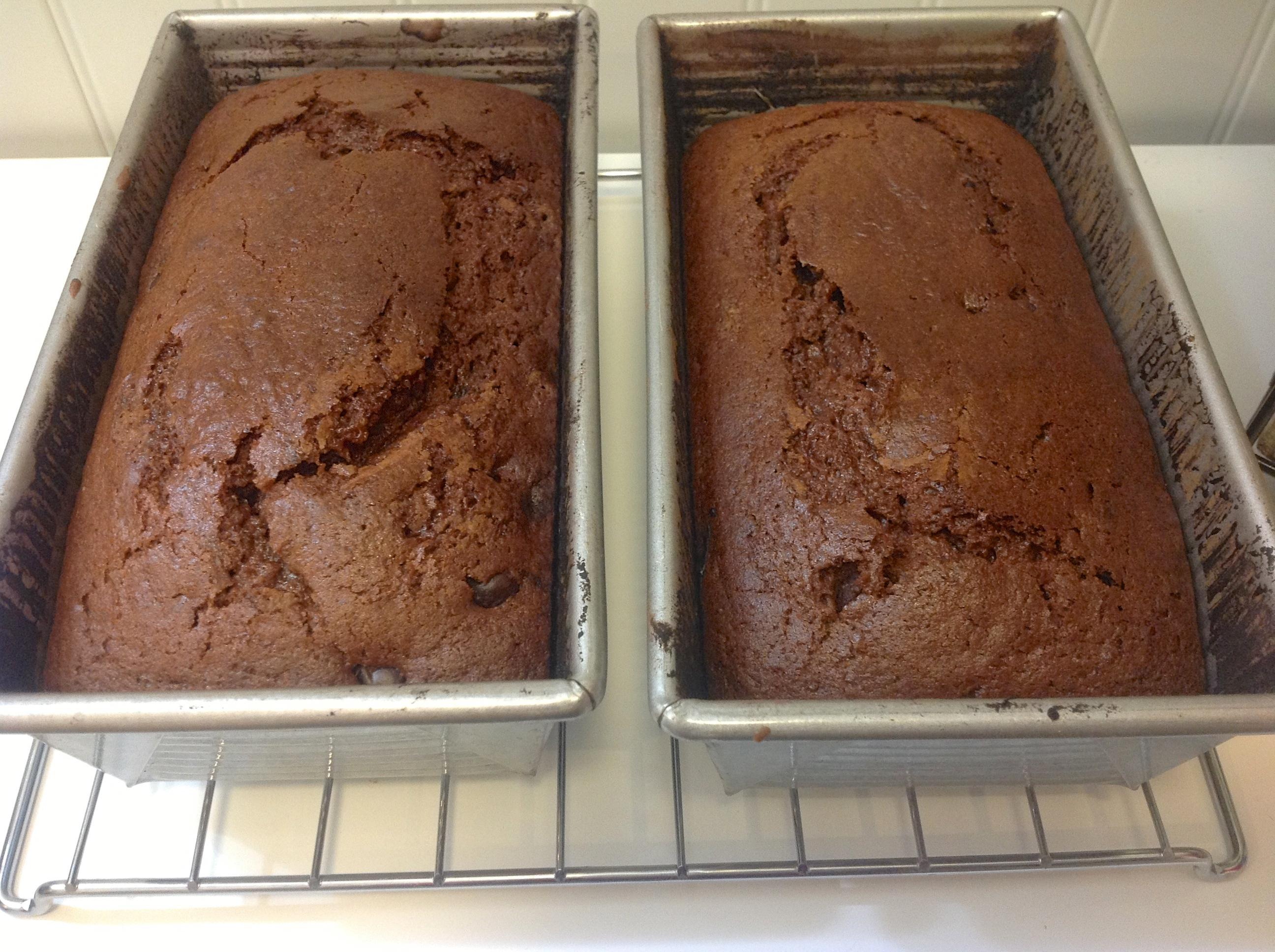 Mocha Fudge Amish Friendship Bread Cake by Diane Siniscalchi   friendshipbreadkitchen.com