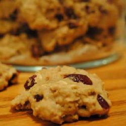 Amish Friendship Bread Oatmeal Cranberry Cookies