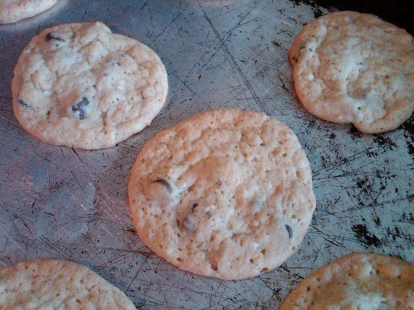 Amish Friendship Bread Chocolate Chip Cookies by Erika Yak ♥ https://www.friendshipbreadkitchen.com