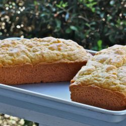 Amish Friendship Bread (Low Sugar)
