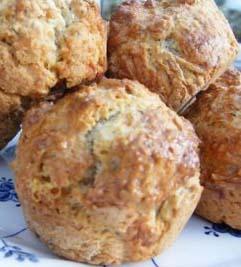 Cheese Dilly Amish Friendship Bread Rolls by Mary Marlowe Leverette | friendshipbreadkitchen.com