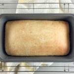 Potato Flake Amish Friendship Bread