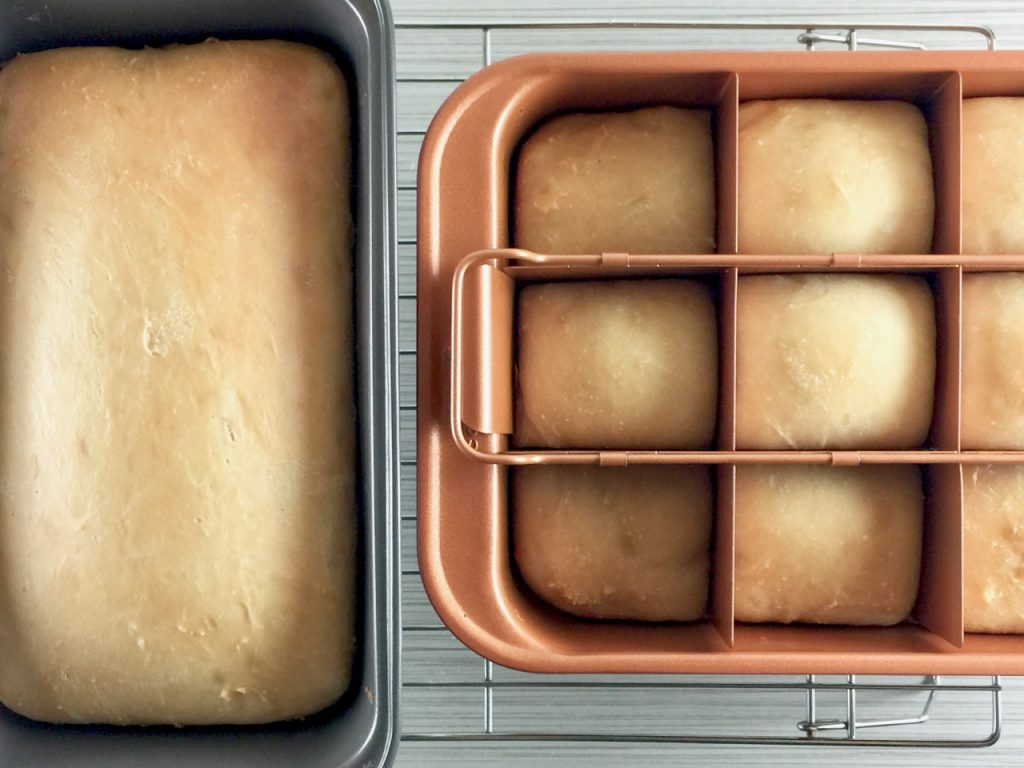 Potato Flake Amish Friendship Bread + Rolls | friendshipbreadkitchen.com