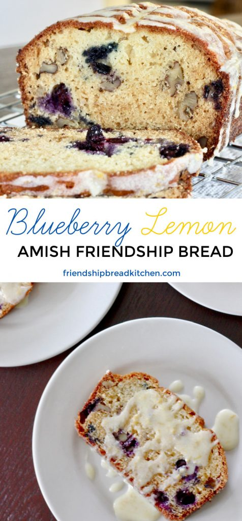 Blueberry Lemon Amish Friendship Bread Long-2