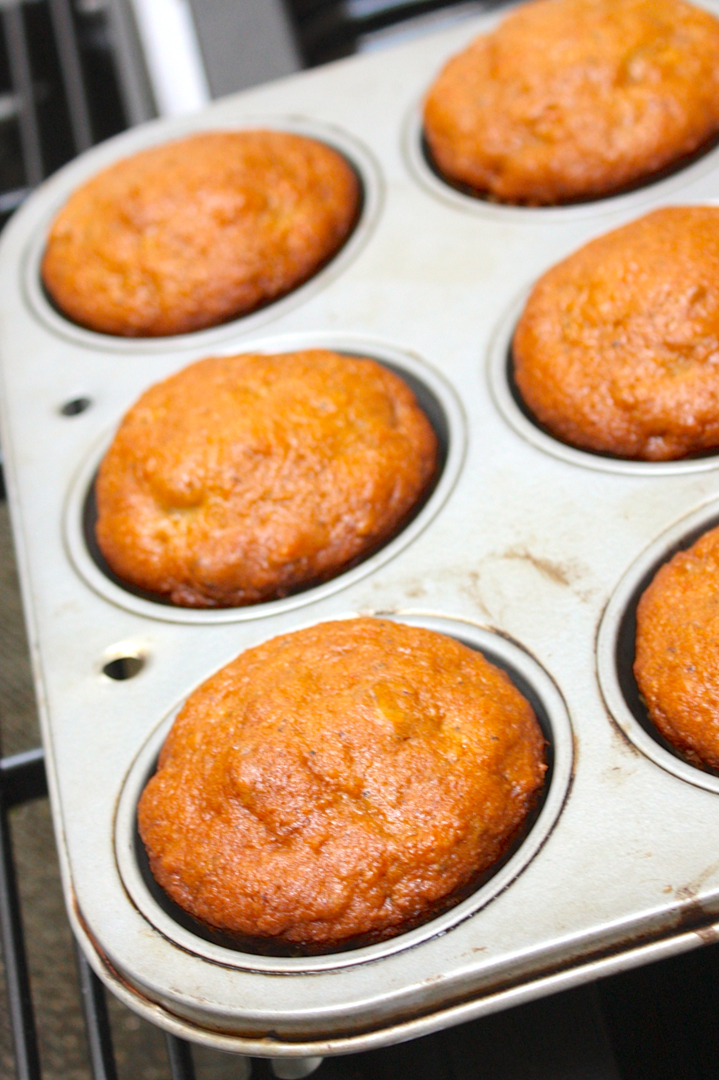 Lemon Amish Friendship Bread Muffins | friendshipbreadkitchen.com
