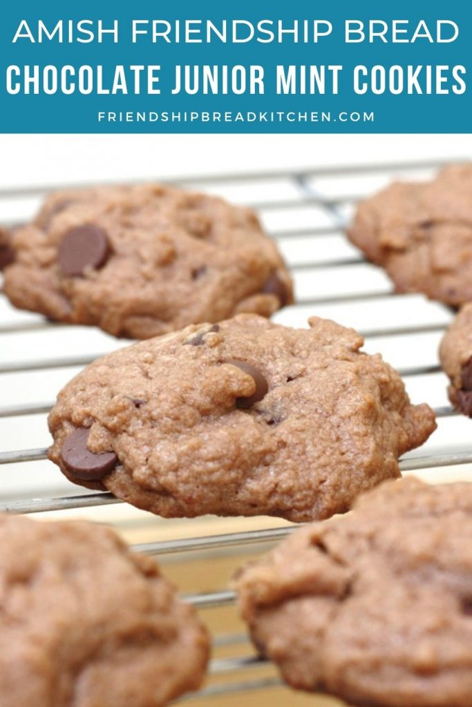 amish friendship bread chocolate junior mint cookies