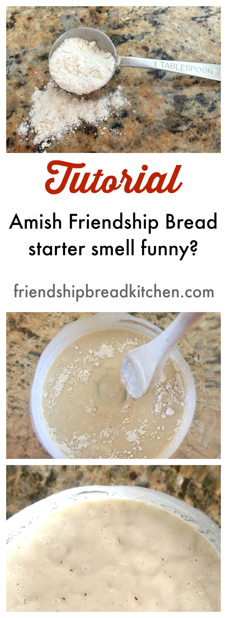 Amish Friendship Bread Starter Tutorial ♥ friendshipbreadkitchen.com