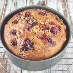 Pumpkin Cranberry Oil-Free Amish Friendship Bread | friendshipbreadkitchen.com
