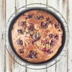 Pumpkin Cranberry Walnut Oil-Free Amish Friendship Bread Cake