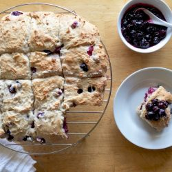 Blueberry Cream Amish Friendship Bread Biscuits | friendshipbreadkitchen.com