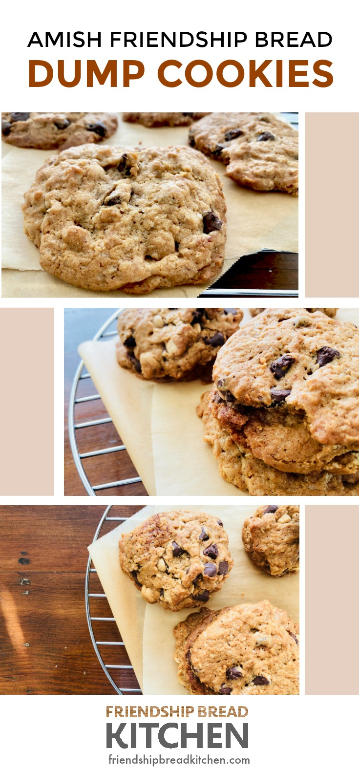 Amish Friendship Bread dump cookies collage