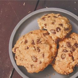 Amish Friendship Bread Molasses Chocolate Chip Oatmeal Cookies