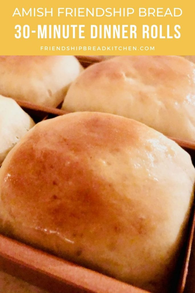 closeup of dinner rolls