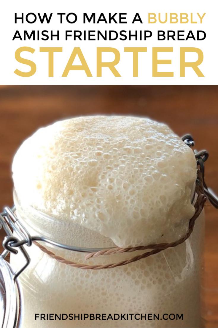 Amish Friendship Bread Starter (Original)