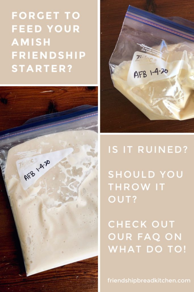 Did You Forget to Feed Amish Friendship Bread Starter?