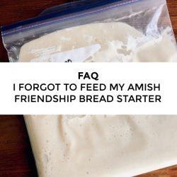 FAQ – I forgot to feed my starter, should I throw it away?