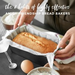 The 7 Habits of Highly Effective Amish Friendship Bread Bakers