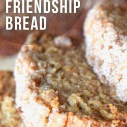 pudding free amish friendship bread