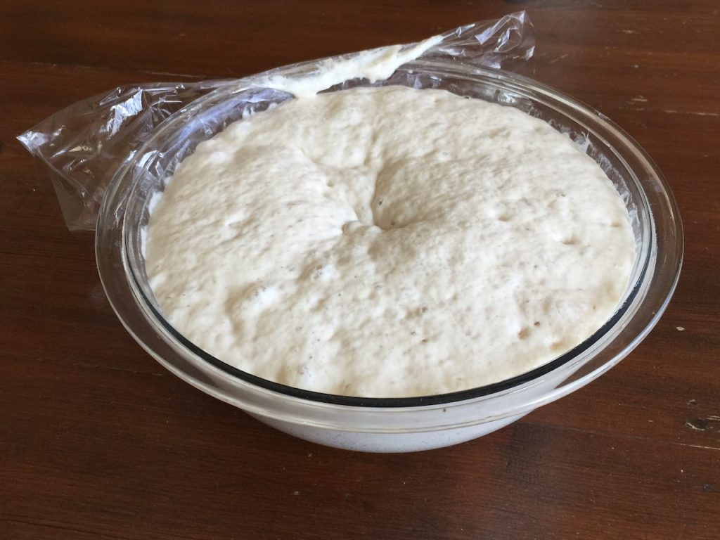 Sourdough starter in a bowl