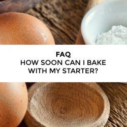 FAQ – How soon can I use my Amish Friendship Bread starter?