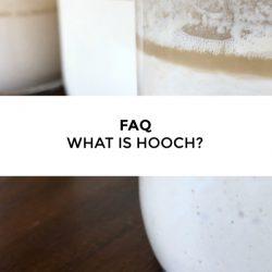 FAQ – What is Starter Hooch?