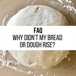FAQ – Why didn't my bread or dough rise?