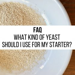 FAQ – What kind of yeast should I use for my starter?