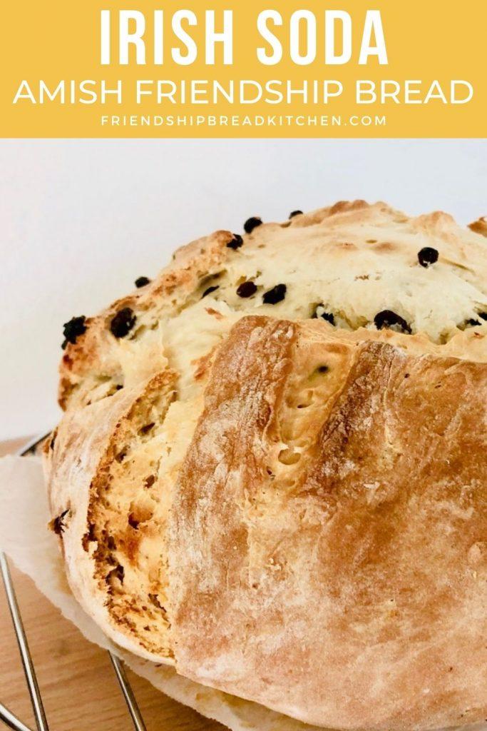 Irish Soda Amish Friendship Bread