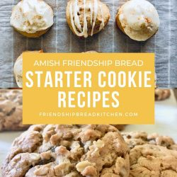 amish friendship bread and sourdough cookies